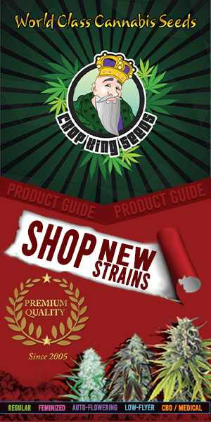 Crop King Seeds (COM) Shop New Strains World Class Cannabis Seeds 300x600